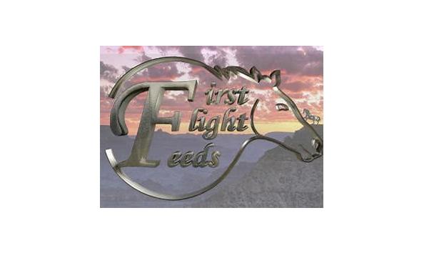 Big image fff
