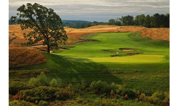 Big image 2017 us open golf  4