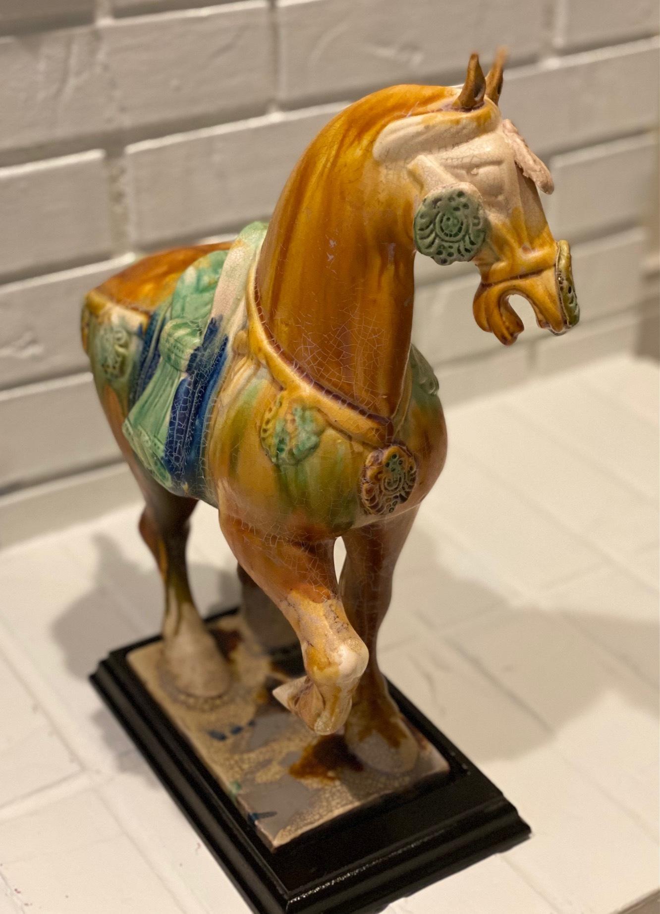 Horseimg 8920