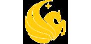 Sponsor logo ucf logo