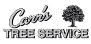 Sponsor logo carr s logo
