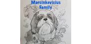 Sponsor logo marcinkevicius