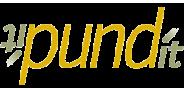 Sponsor logo pundit