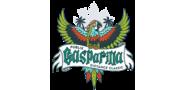 Sponsor logo pgdc parrot logo only orig