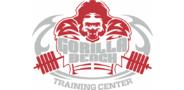 Sponsor logo gbtclogo orig