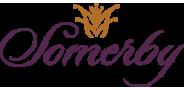 Sponsor logo somergy logo